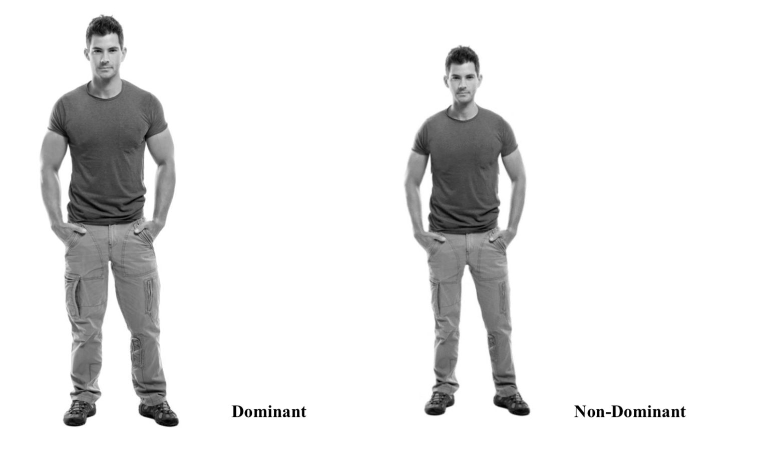 Men Beware: The Abercrombie & Fitch Effect - New Neuromarketing